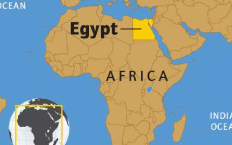 Egypt activist accuses court of forging evidence
