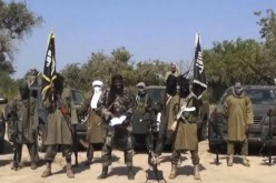 First Boko Haram attack in Niger: witnesses
