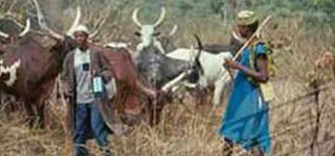 Suspected herdsmen kill dozens in Nigeria