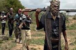 Boko Haram Cameroon attack toll rises to 19, 'many beheaded'