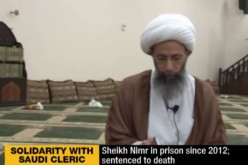 Saudi protesters hold rally to support senior Shia cleric