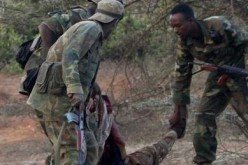 Somalia: Militants kill lawmaker in capital, attack 2 towns