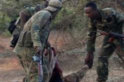 Somalia: Militants kill lawmaker in capital, attack 2 towns