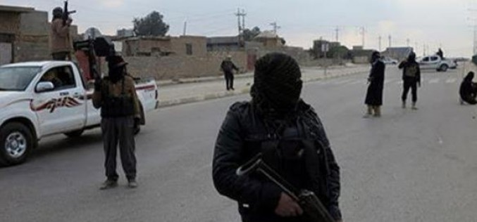Daesh terrorists execute 18 in Iraq's Kirkuk