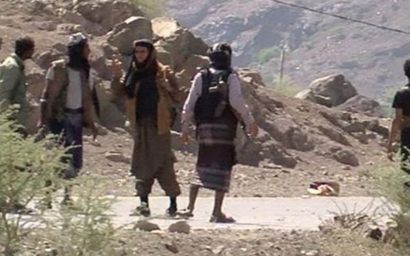 Yemen: Al-Qaeda joins coalition battle for Taiz