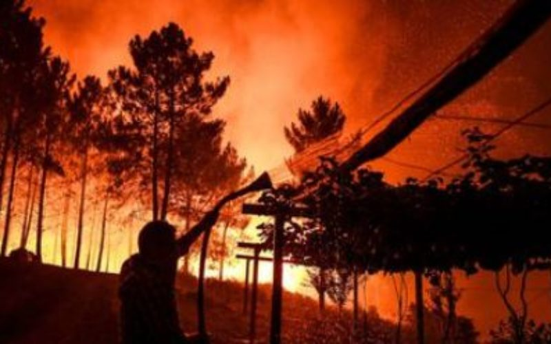 Portugal: a huge fire that ravages the center of the country, has already made eight wounded