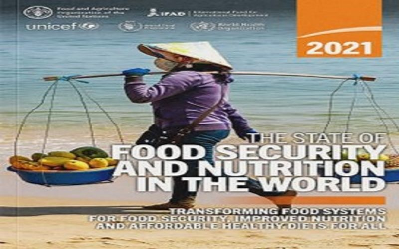 """UN Report: """"The State of Food Security and Nutrition in the World 2021"""""""