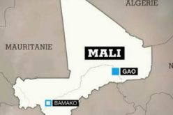 Human Rights Agency condemns attacks against civilians in Mali