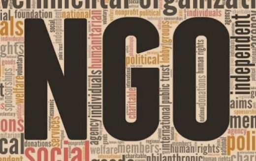 The role of NGOs in the promotion of human rights