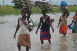Death toll rises to 28 in Mozambique cholera epidemic
