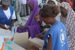 Nigeria: WFP helped more than one million people in the north of the country in December alone; It would need $ 143 million to help northeastern populations in the next 6 months