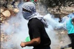 Two Palestinians killed by the Israeli forces in a refugee camp in Jenin