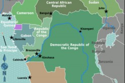 Deaths Due to Violence in Central Africa
